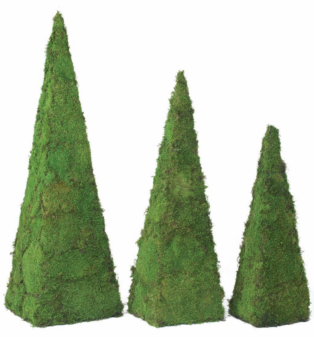 Pyramides en mousse plate stabilis e concept vegetal for Enlever la mousse sur les murs