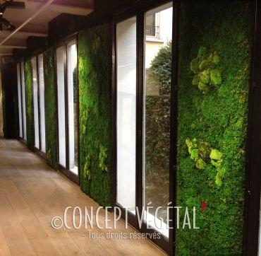 murs stabilisé vertical artificiel et semi-artificiel sans