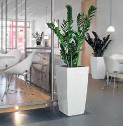 pot cubique haut en r sine plante stabilis e ou artificielle murs v g taux sur mesure. Black Bedroom Furniture Sets. Home Design Ideas