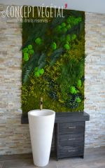 tableaux v g tal de plantes stabilis s semi artificiels. Black Bedroom Furniture Sets. Home Design Ideas