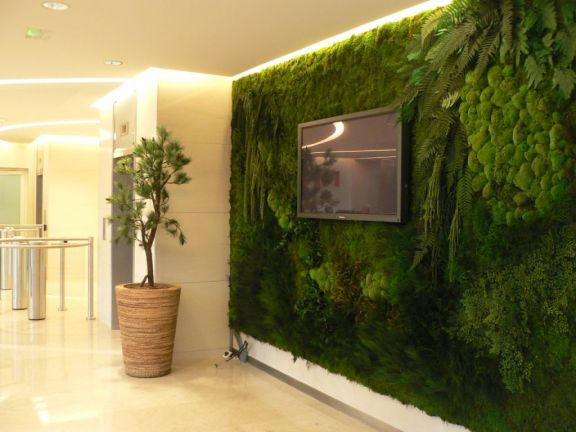 Mur v g tal de d coration aux plantes naturelles for Pot de decoration interieur