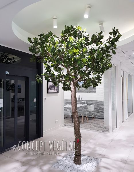 Httpswwwconcept Vegetal Decocomcatalogue Httpswwwconcept