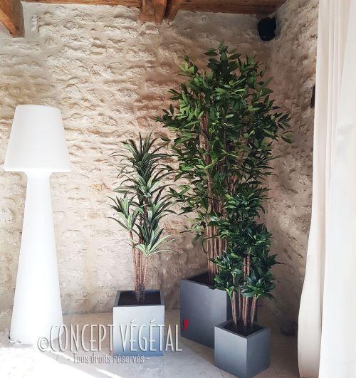 plantes vertes et plantes fleuries artificielles plante stabilis e ou artificielle murs. Black Bedroom Furniture Sets. Home Design Ideas