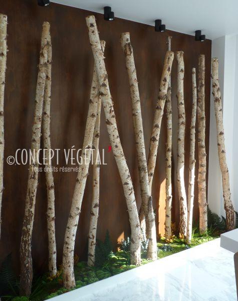 troncs de bouleaux plante stabilis e ou artificielle murs v g taux sur mesure