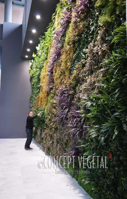 Murs En Végétal Artificiel Mur Végétal